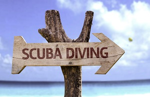 Learn To Scuba Dive Online in Arizona With Saguaro Scuba