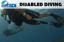 SDI Disabled