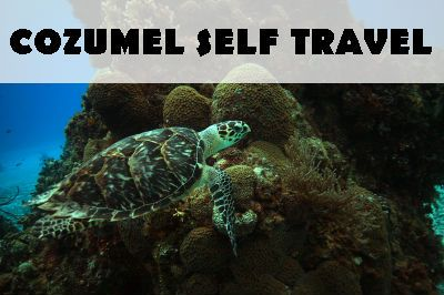 cozumel-dive-travel
