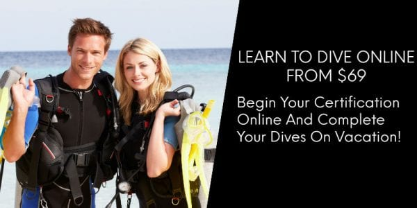 LearnToDive800