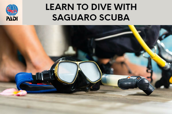 learn to scuba dive arizona PADI