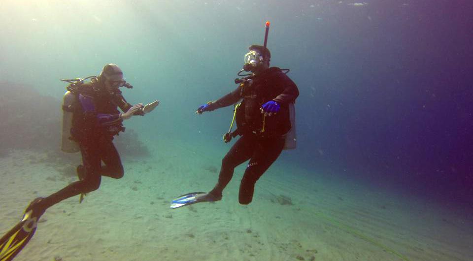 SDI Scubility Diver Program