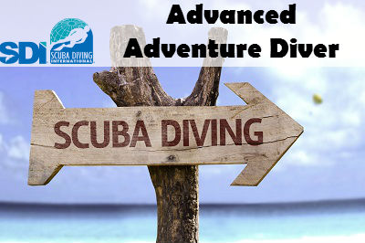 SDI ADVANCED LAKE TRAINING DIVES