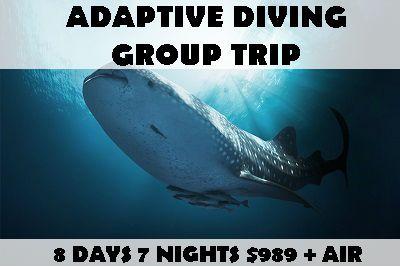 adaptive2017