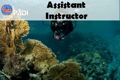 PADI ONLINE ASSISTANT INSTRUCTOR COURSE