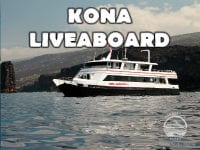 KonaLiveaboard200