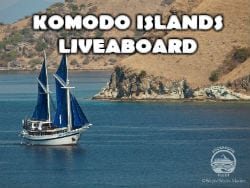 Komodo Islands250