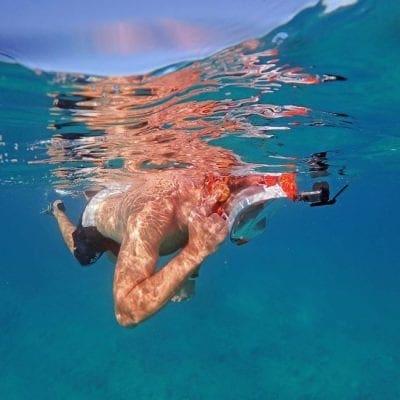 """Ocean Reef """"Snorkie"""" Talkie"""