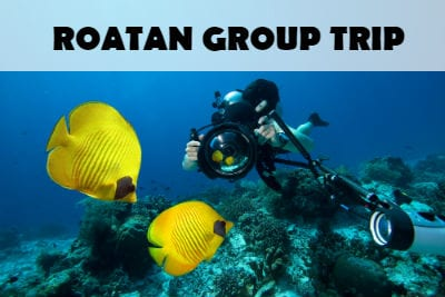 roatan group trip