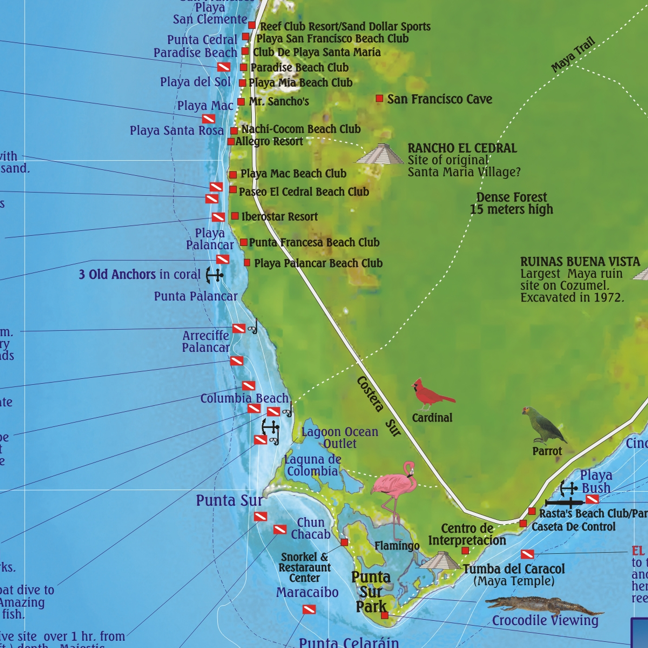Franko Cozumel Guide and Dive Map