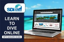 LEARN DIVE ONLINE WITH
