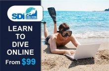 SDI LEARN TO DIVE