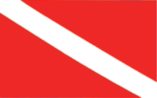 "STICKER DIVE FLAG 5 1/2"" X 7"""
