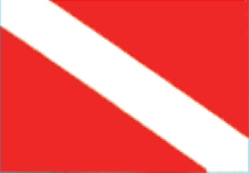 "STICKER DIVE FLAG 2""X3"""